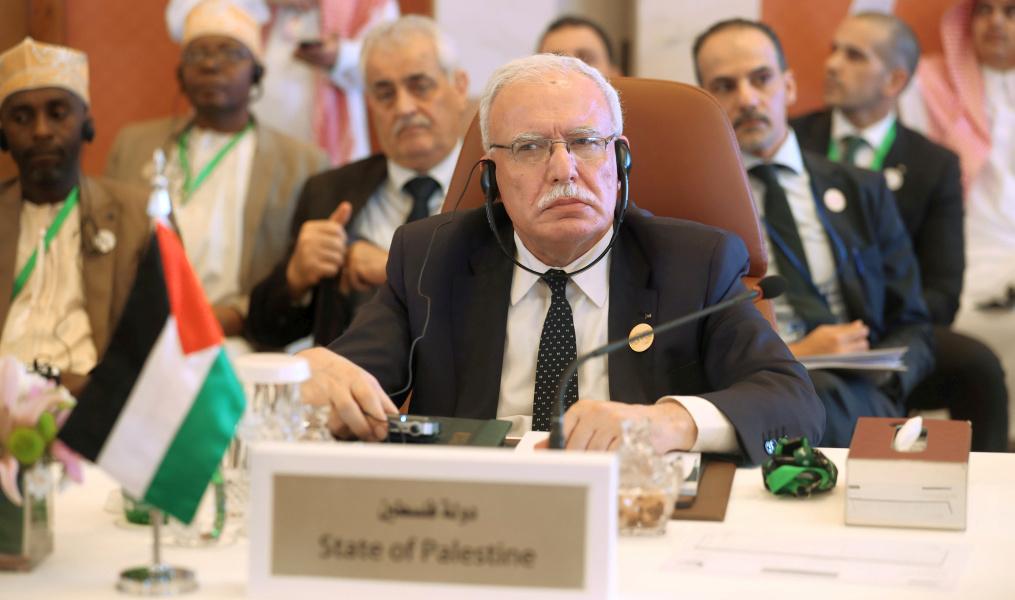 Палестинские арабы в ООН: оккупанты сами делают прививки, а нам не дают