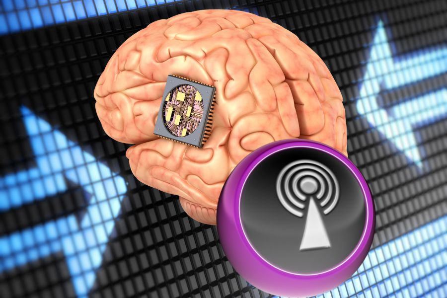 СМИ: Путин утвердил программу вживления чипов в мозги россиян
