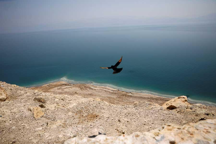Около 300 мужчин и женщин разделись догола, чтобы сфотографироваться на берегу Мертвого моря